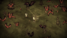 A screenshot of Wickerbottom using the book Birds of the World on a Don't Starve Together server